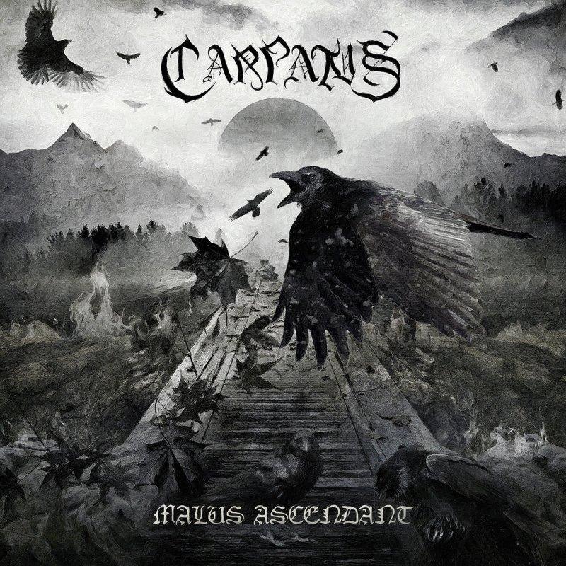 Carpatus - Malus Ascendant