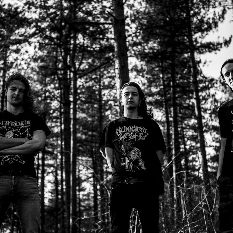 """New Promo: VERWILDERD - """"Homo Homini Lupus Est"""" - (Black Metal)"""