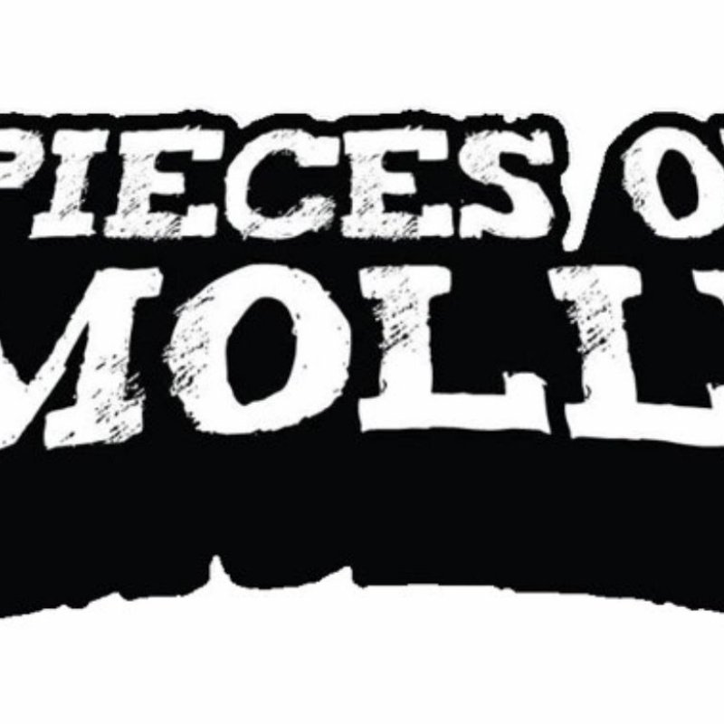 NEW ZEALAND RIFF HYPNOTISTS PIECES OF MOLLY SIGN TO RIPPLE MUSIC, NEW ALBUM COMING LATE 2021