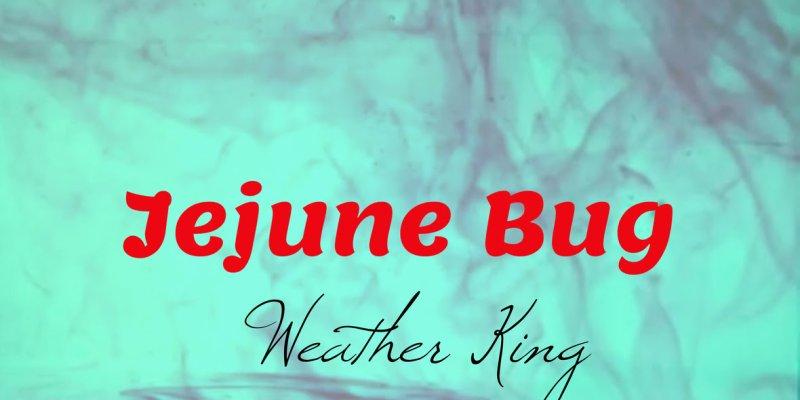 """Alternative Rock Band Weather King Releases Single """"Jejune Bug"""" November 9, 2018"""