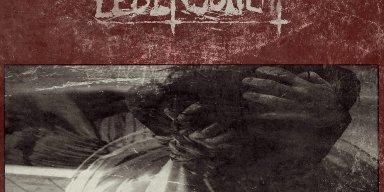 Black Metal super group LEBENSSUCHT announce new guitarist- Irleskan!
