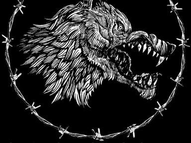 Metalicious / New Music