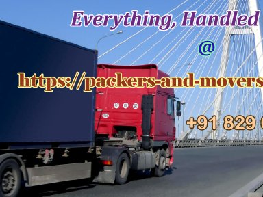 packers-and-movers-delhi-local