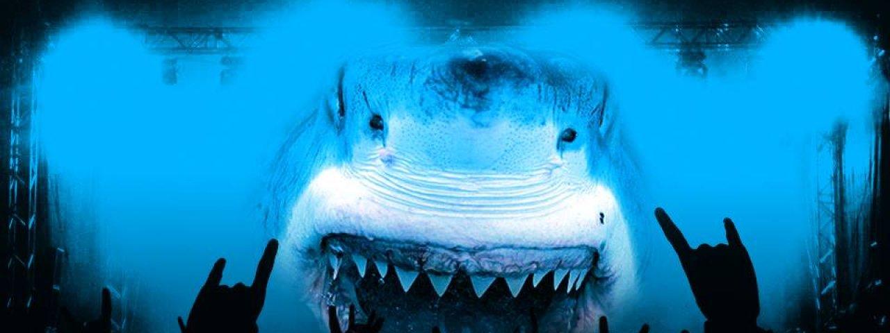 noah-shark.robertson