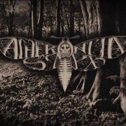 Acherontia Styx