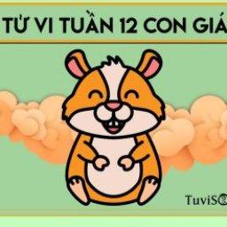 tu-vi-tuoi-ty-tuan-02-11-08-11-hay-tap-trung-hon