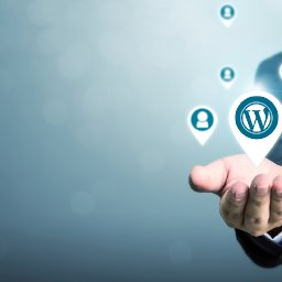 hire-wordpress-developer-india-wordpress-developers-india