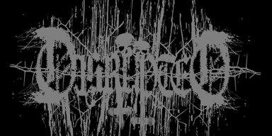 New Music: Disrupted (Sweden) - Pure Death Memento Mori / De:Nihil Release: 26 October 2020