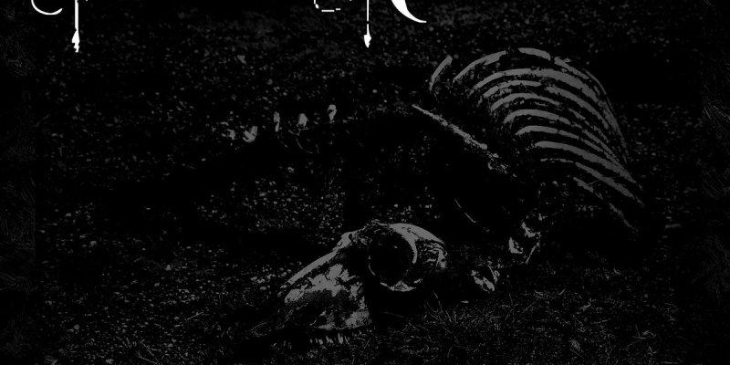 SFERA Death Will Come