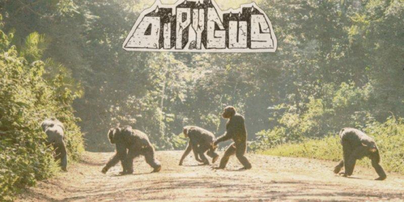 "DIPYGUS premiere new track at ""Decibel"" magazine's website"
