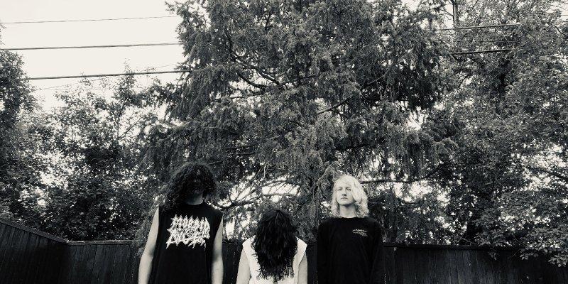 "ASTRAL TOMB stream new BLOOD HARVEST EP at ""Decibel"" magazine's website"