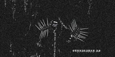 CTENIZIDAE: new promo materials from NEBULAR CARCOMA