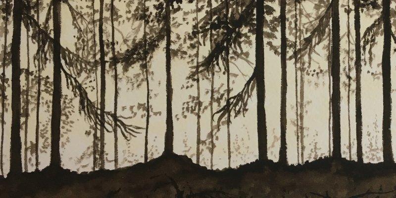 ÖRNATORPET sets release date for new NORDVIS album