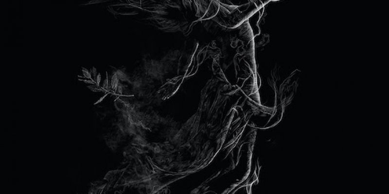 """JARBOE RELEASES FIRST NEW SONG, """"ILLUSORY,"""" FROM UPCOMING ALBUM DUE ON APRIL 17TH"""
