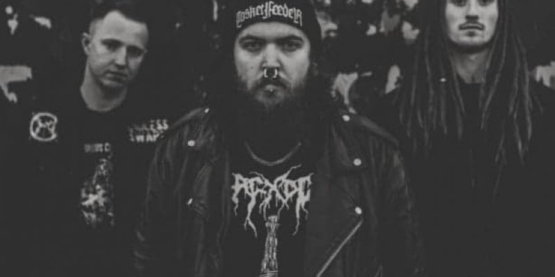 """Grindcore band Negative Thought Process releases """"Cognitive Dissonance"""""""
