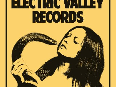 Electric Valley Records - Vol​.​2 - Free Download!
