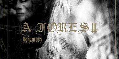 """Behemoth releases new EP, 'A Forest', digitally worldwide; launches new single, """"Evoe"""""""