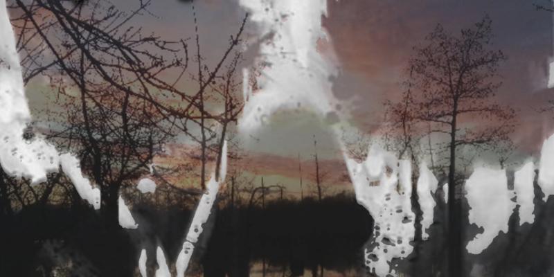 New Promo: Ba'alzamon - A Desolate Place LP (Melodic Death / Black Metal)
