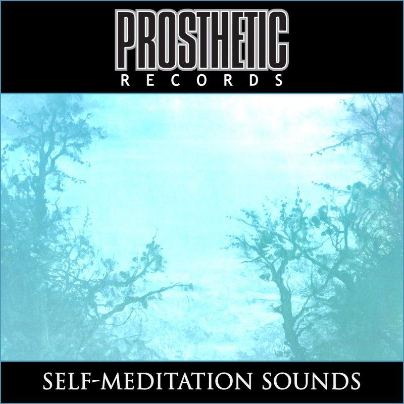 SELF-MEDITATION SOUNDS by Prosthetic Records