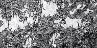 BLOOD HARVEST to release USDM 4-way split featuring OXALATE, PERPETUATED, BLOOD SPORE, and VIVISECT