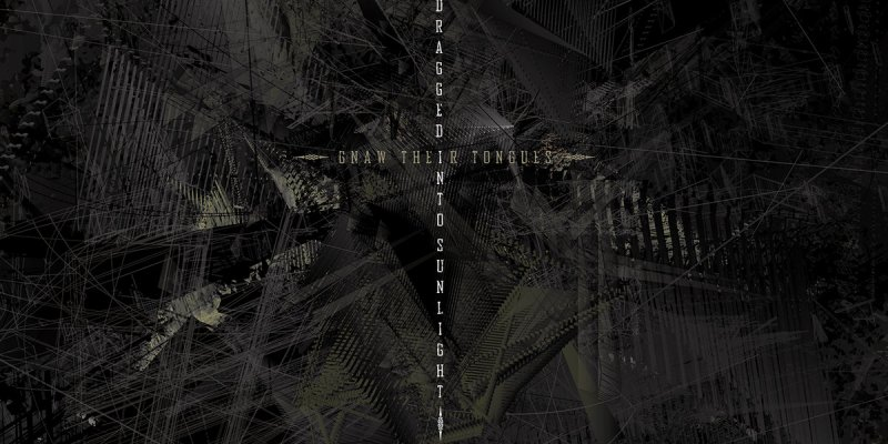N​.​V. by Dragged Into Sunlight/Gnaw Their Tongues