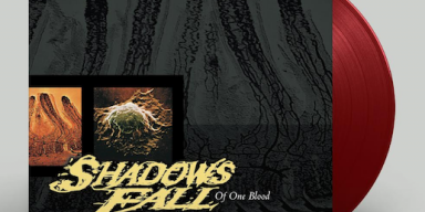 SHADOWS FALL TO REISSUE 'OF ONE BLOOD' ON BLACK FRIDAY 2020