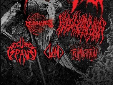 IMMOLATION, Blood Incantation, Accursed Spawn, Fumigation, Gland, Misshapen