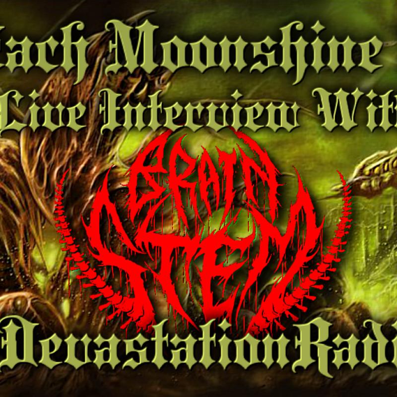 Brain Stem - Live Interview - The Zach Moonshine Show