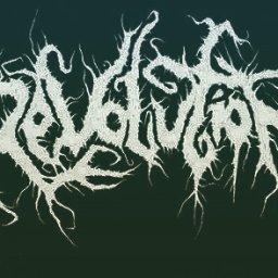 Revolution BD