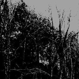 full-length-review-kuroi-jukai-kuroi-jikai-sentient-ruin-laboratories-by-devin-joseph-meaney