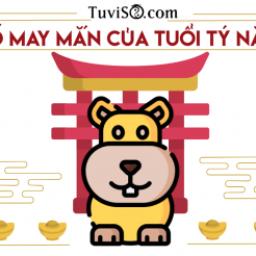 con-so-may-man-cua-tuoi-ty-nam-2021-so-6-hanh-phuc-ca-nam