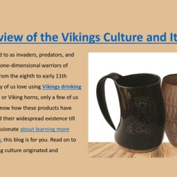 what-are-the-favorite-products-of-vikings